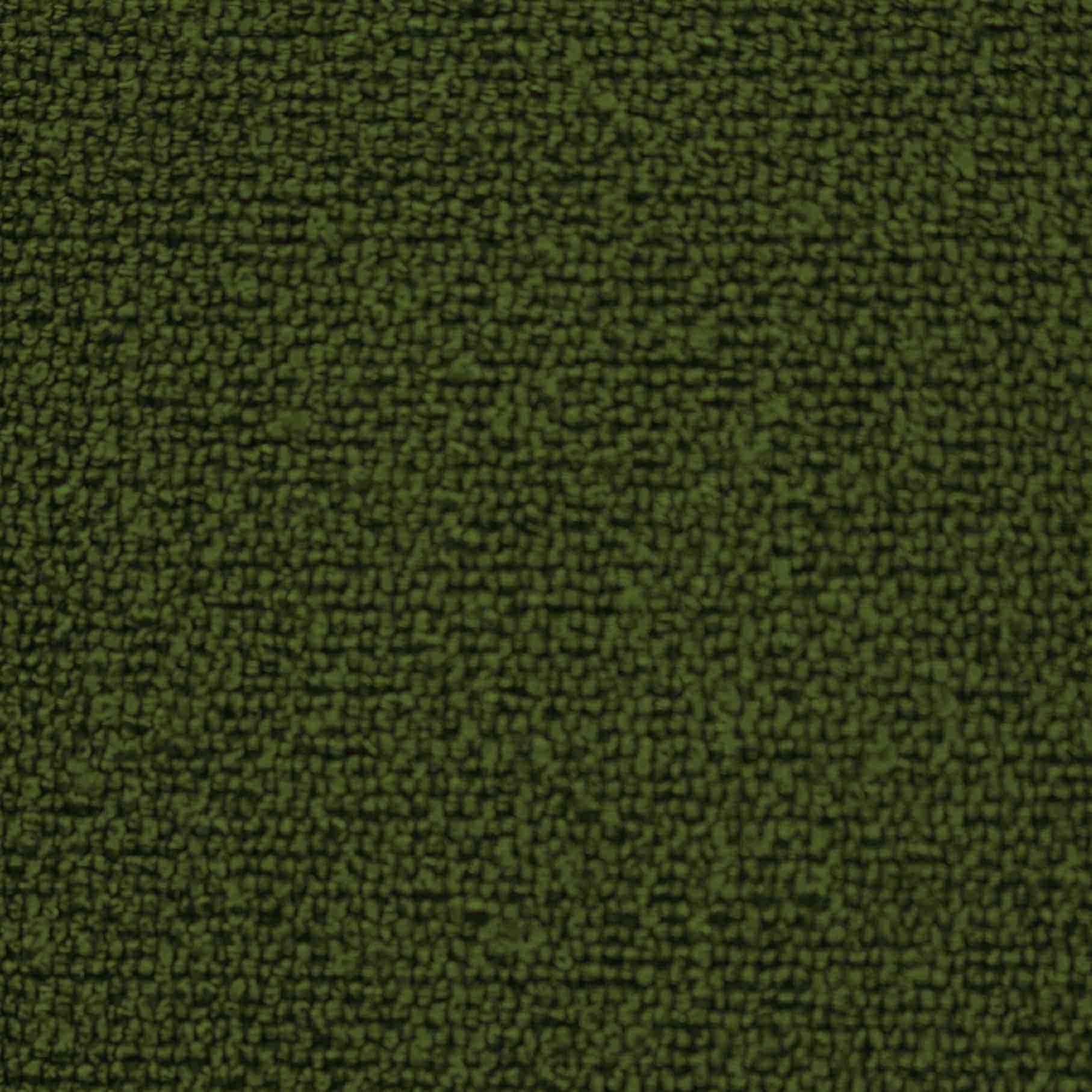 11・襖の友676緑リングk2